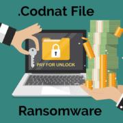 Remove .Codnat File Virus ransomware (+File Recovery)